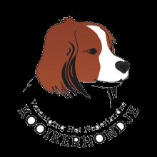 Logo VHNK